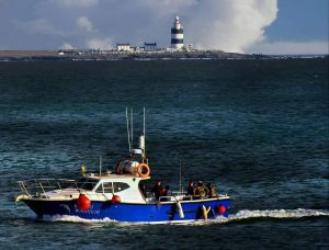 Bay, Dunmore East, Fishing, Gentle, Camino, Wlak, Guided, Tour, Weekend, Waterford