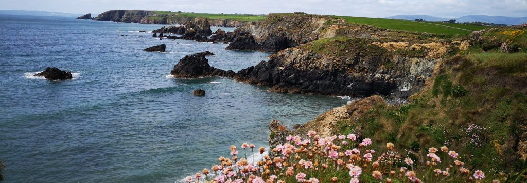 Walk, coastal, Dunmore East, Waterford, Greenway, Ireland, Camino, path, pilgrim