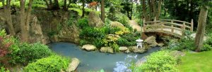 Gardens, Japanese, Camino, Gentle, Guided, Tour, Waterford, Ireland, Walk